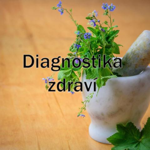 Diagnostika Zdraví
