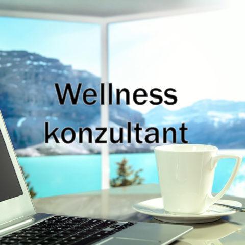 Wellness konzultant